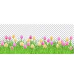 Green grass tulip flowers border frame vector