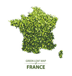 Green leaf map of france of a vector
