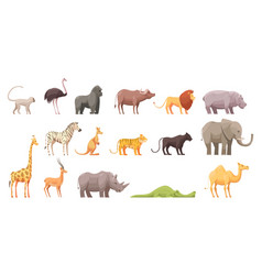 Wild tropical animals set vector