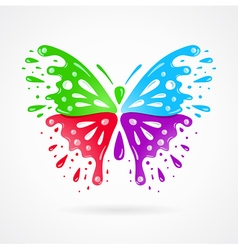 butterfly colorful splash drops vector image vector image