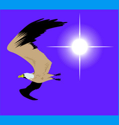 flying seagull in sky with bright sun vector image