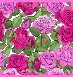seamless rose pattern excellent for fabric vector image