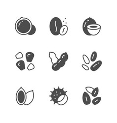 set icons of nuts and seeds vector image