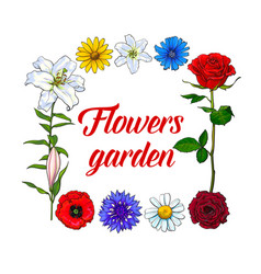 square frame of wild garden flowers with place vector image
