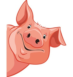 pig peeking out from the left - vector image