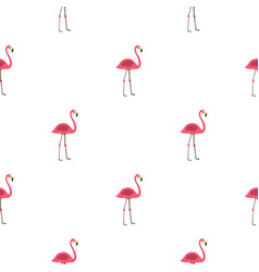 Pink flamingo pattern seamless vector