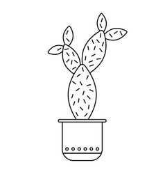 Cactus succulent flat linear icon vector