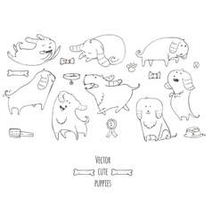 Cute little puppies set in various poses jumping vector image