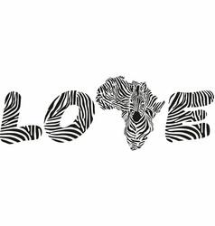 love to wild zebras africa vector image