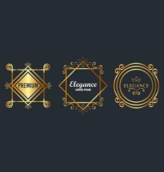 premium and elegance set frames vector image
