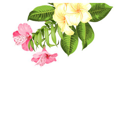 Single tropical flower bouquet at the top corner vector