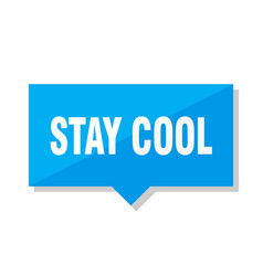 Stay cool price tag vector