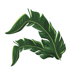 tropical leave palm tree image vector image vector image