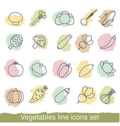 vegetables line icons vegetables line icons vector image vector image