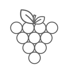 figure grapes fruit icon image vector image