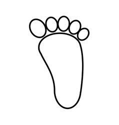 foot print isolated icon design vector image vector image