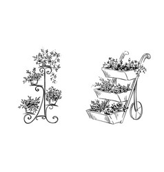 flower stands vector image vector image