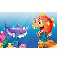 A prey and a predator under the sea vector