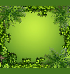 Aerial view plants and rocks vector
