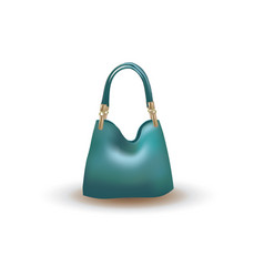 blue woman bag vector image