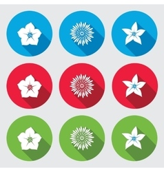 Flower icons set Petunia chrysanthemum daisy vector
