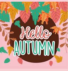 foliage leaves hello autumn season vector image