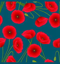 Red corn poppy on indigo blue background vector
