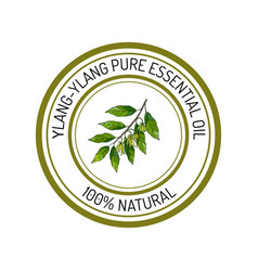 ylang-ylang essential oil label aromatic plant vector image