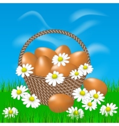 Basket with brown eggs on the grass vector image