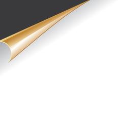 Paper slip vector