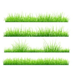 Set of green grass vector image vector image