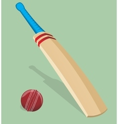 Bat and ball for cricket vector image vector image