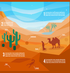 desert infographics vector image
