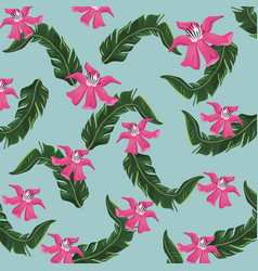 hibiscus tropical flower leaves nature vector image