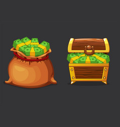 full bag bag and chest money vector image