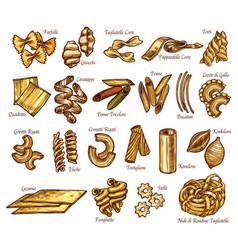 Italian pasta sketch sorts icons vector