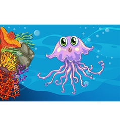 Jelly fish vector image