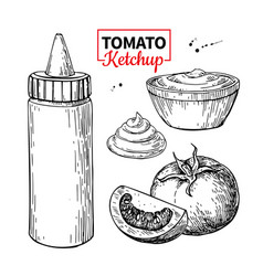 ketchup sauce bottle with tomatoes drawing vector image