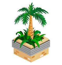 palm plant vector image