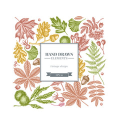 Square design with pastel fern dog rose rowan vector
