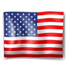The USA flag vector image