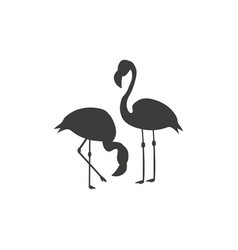 two flamingos icon - on white vector image