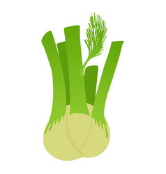 fennel icon cartoon style vector image