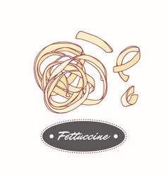 hand drawn pasta fettuccine isolated on white vector image vector image