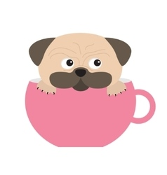 Pug dog mops paw sitting in big pink cup Cute vector image vector image