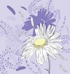 abstract background with camomile vector image vector image