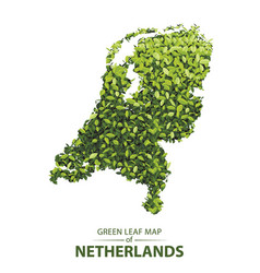 Green leaf map of netherlands of a vector