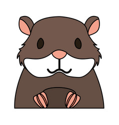 Hamster rodent on white background vector