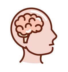 human body profile brain anatomy organ health line vector image