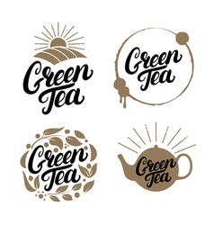Set of Green Tea hand written lettering logos vector image
